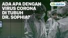 LIPSUS EPS.2 - CORONA MEMBANDEL DI TUBUH DR. SOPHIA
