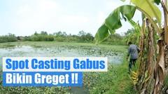 Spot Gabus ini Bikin Greget !!