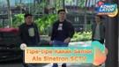 Kira-Kira Syifa Hadju dan Aliando Masuk Tipe Senior yang Gimana Kalo di Sekolah? #KOMPILATOP