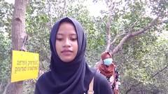 jalan jalan di hutan mangrove