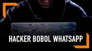 WhatsApp Rentan Dibobol Hacker, Awas Pencurian Data Pribadi
