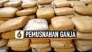 BNN Banten Musnahkan 301 Kg Ganja Asal Aceh