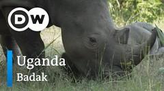 DW Going Wild 12 - Uganda_Badak