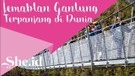 Rasakan Sensasi Jembatan Gantung Terpajang di Dunia (1)
