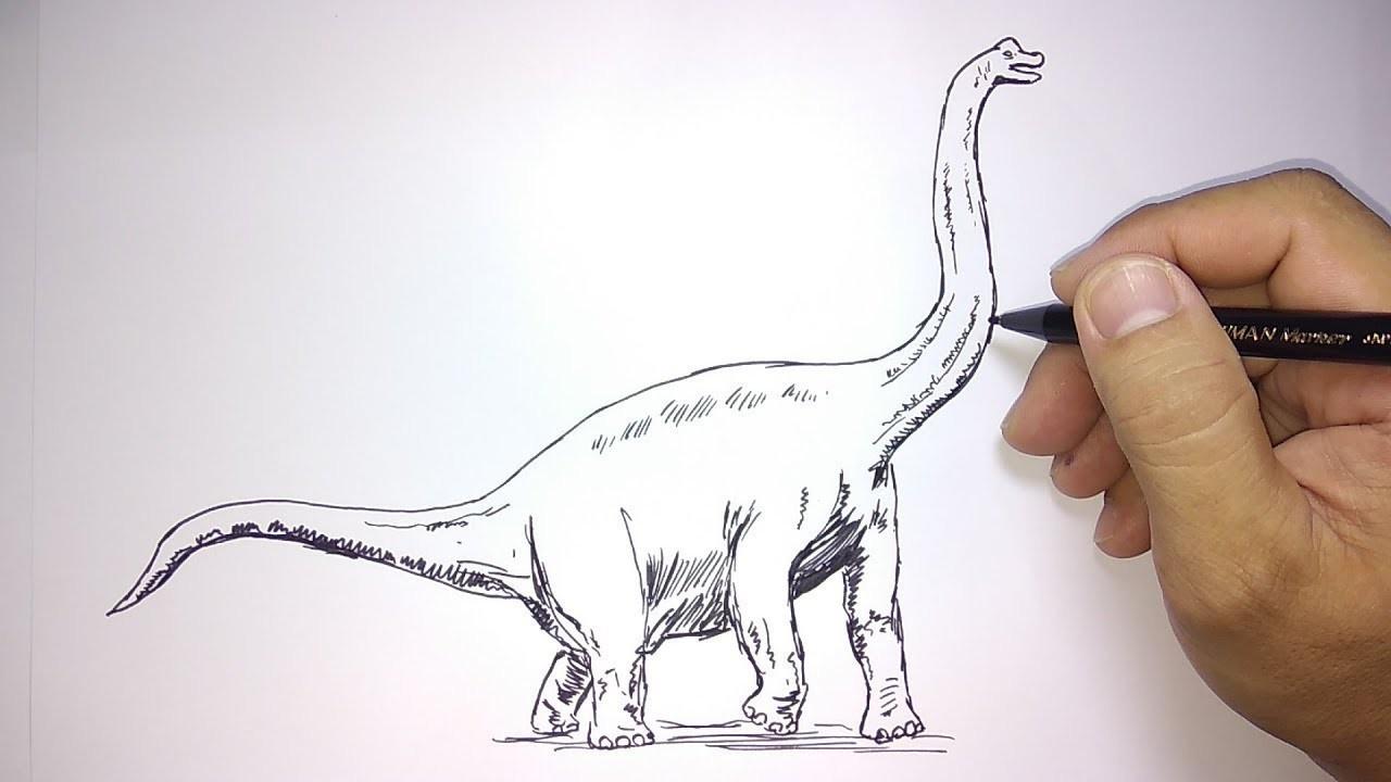 Cara Menggambar Dinosaurus Branchosaurus