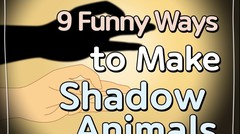[Life Hacks] How to Make Shadow Animals with Your Hands