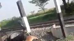Video Viral 2 Relawan Penjaga Perlintasan Kereta Tendang Pemotor yang Nekat Menerobos