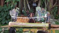 Narend Dalang Cilik di Festival Tepi Sawah