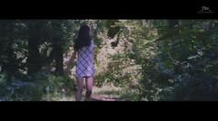 f(x) - 4 Walls Official MV