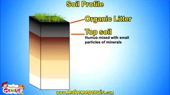 Soil Profile , Structure , Layers