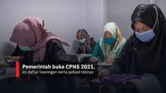 Pemerintah buka CPNS 2021, ini daftar lowongan dan jadwal tesnya