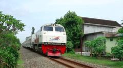 Kereta Api Indonesia Lokomotif CC 203 95 55 Rangkaian KA KAHURIPAN