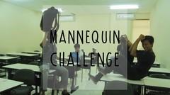 UNIVERSITAS MERCU BUANA BEKASI #VMC #MANNEQUINCHALLENGE