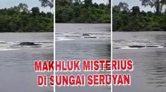 Heboh muncul makhluk misterius di Sungai Mitak Seruyan Kalimantan Tengah