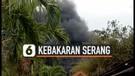 Kebakaran Pabrik Kimia, 3 Karyawan Luka berat