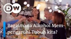 Now You Know - Bagaimana Alkohol Mempengaruhi Tubuh Kita?