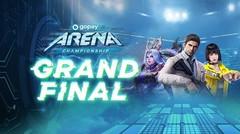 Grand Final GoPay Arena Championship