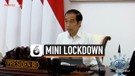 Jokowi Sebut Mini Lockdown Berulang Lebih Efektif