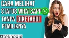 Cara Melihat Status WA_Whatsapp (Tanpa diketahui Pemiliknya)