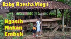 Baby Raesha memberi makan Kambing / Embek sama mbak Icha