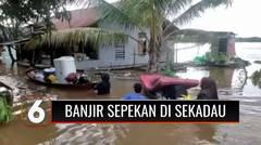 Banjir Sepekan di Sekadau Kalimantan Barat, 2.500 Kepala Keluarga Terdampak | Liputan 6