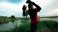 Mancing Di Rawa Kecil Sarang Ikan Betok Hitam