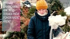 Daur Ulang Pohon Natal Rusia
